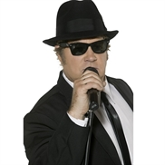 Blues Brothers solbriller